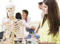 High school student learning about human skeleton.
